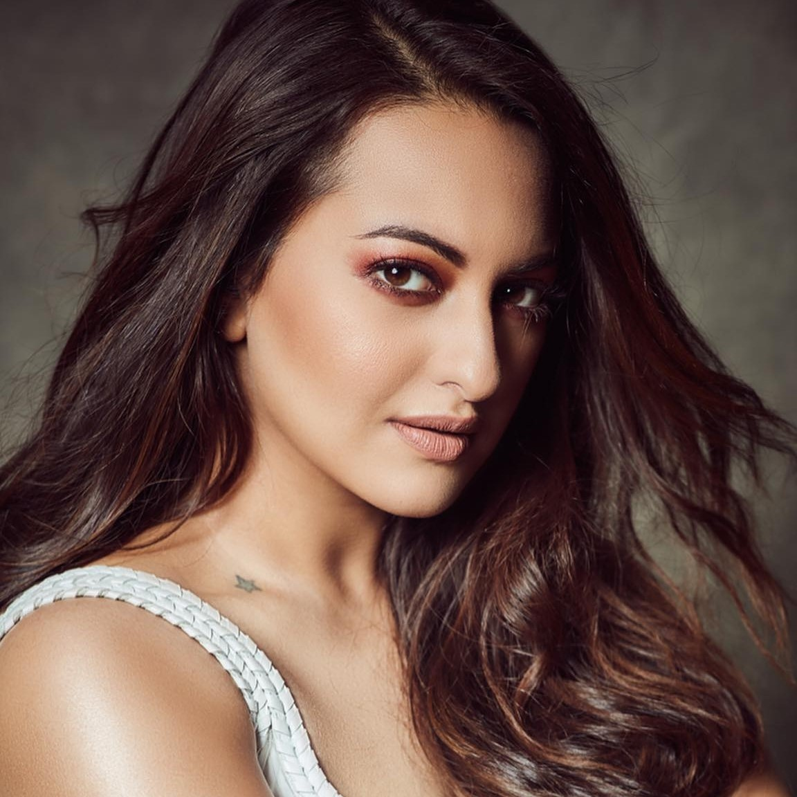 Chargesheet Has Been Filed Against Sonakshi Sinha And Her Four Other Associates After 455 Days